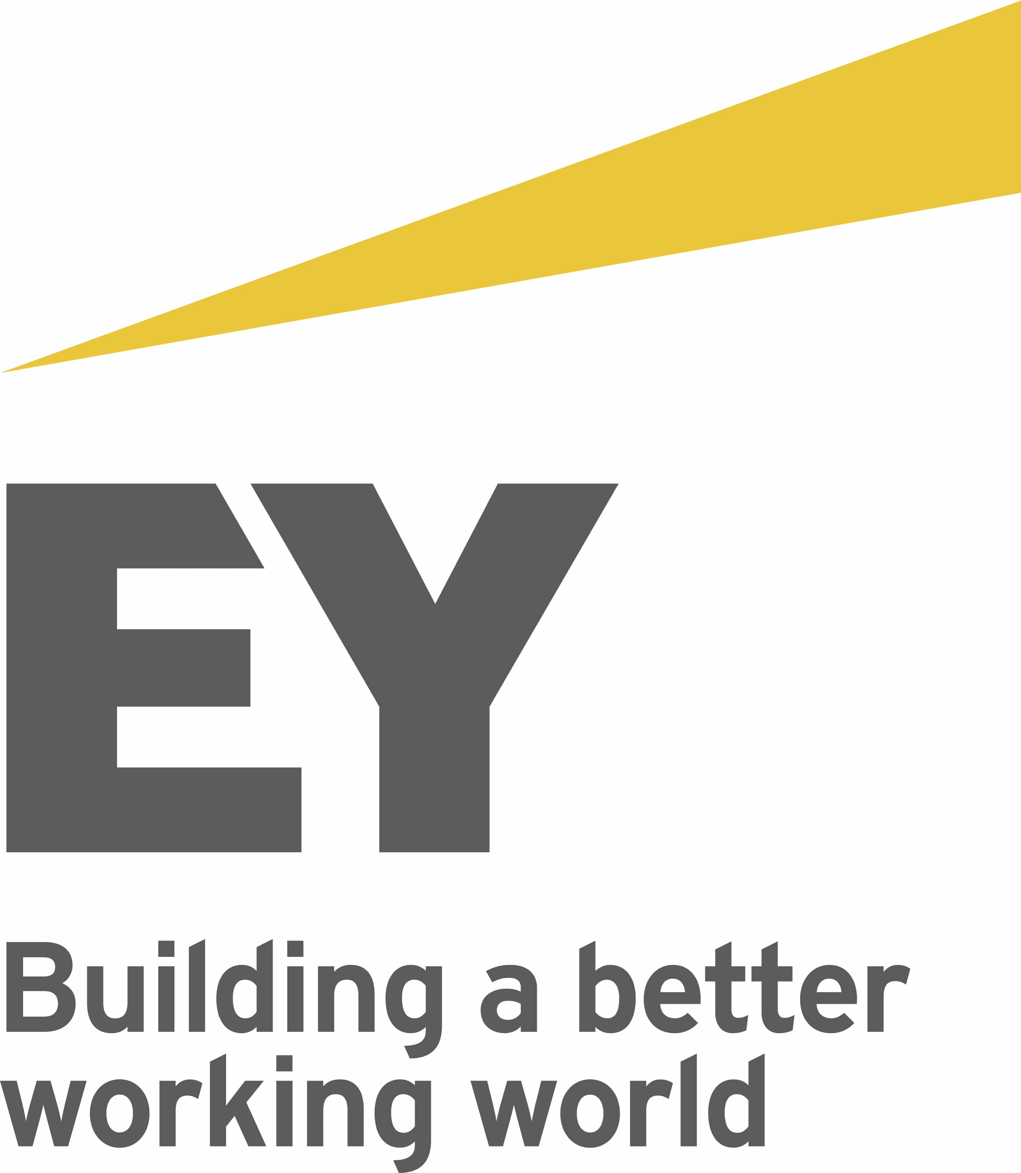 EY Logo Sefa